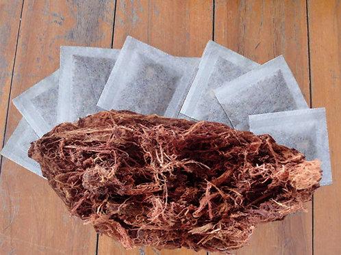 Catchu Bark Heat-Sealed T-Bags