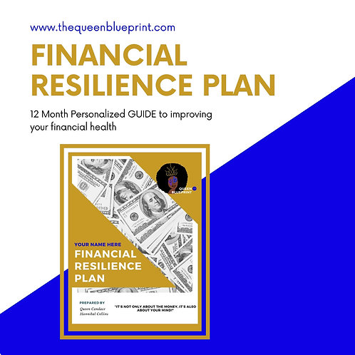 Financial Resilience Plan