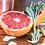 grapefruit citrus