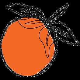 orange2-Transparent.png