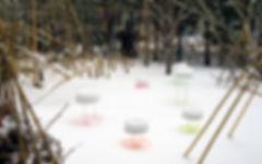 Snow Pallet 11  January 26th 2019(2).jpg