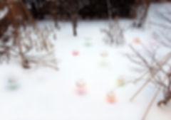Snow Pallet11 Bird's eye view(january25