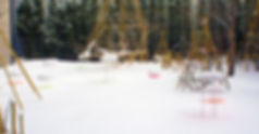 Snow Pallet 11 January 26th 2019(4).jpg