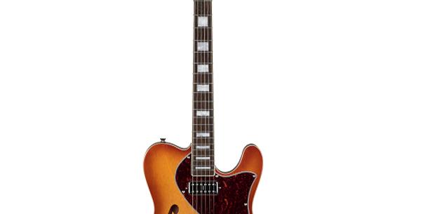 Revelation TSS Hollow Body Electric Guitar