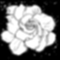009f1cc1860a1e6dc049b7cef55aea01.png