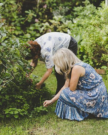 picking-herbs-640x800px-1.jpg