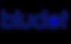 bludot logo dark 2.png