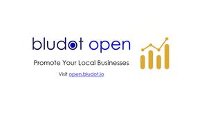 Bludot Open - Analytics