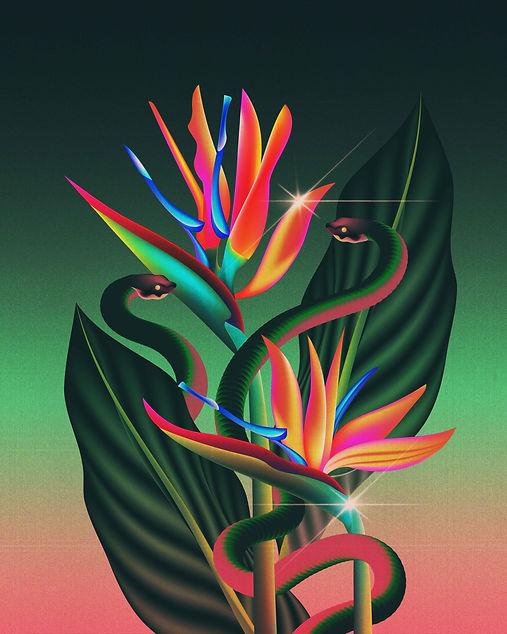 tropics-01.jpg