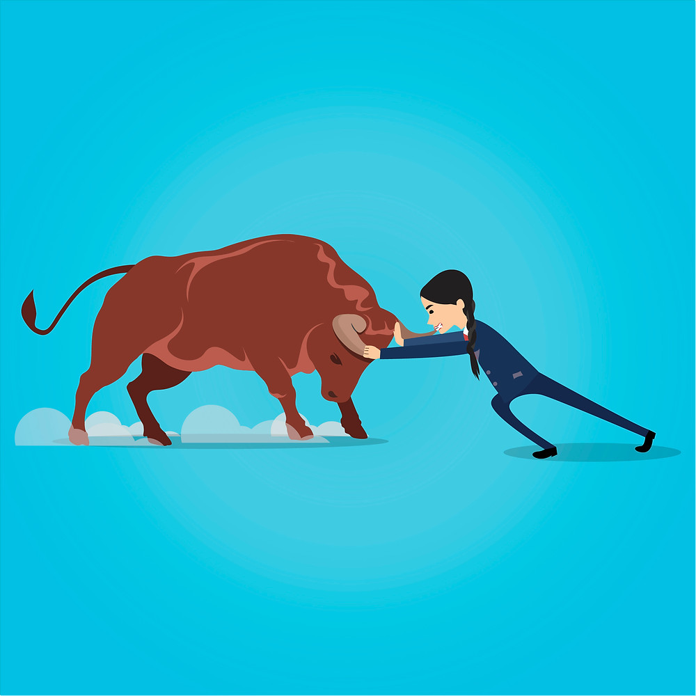 A businesswoman grabs a bull by the horns as it tries to charge.