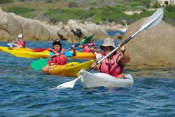 Kayaks Seat on Top