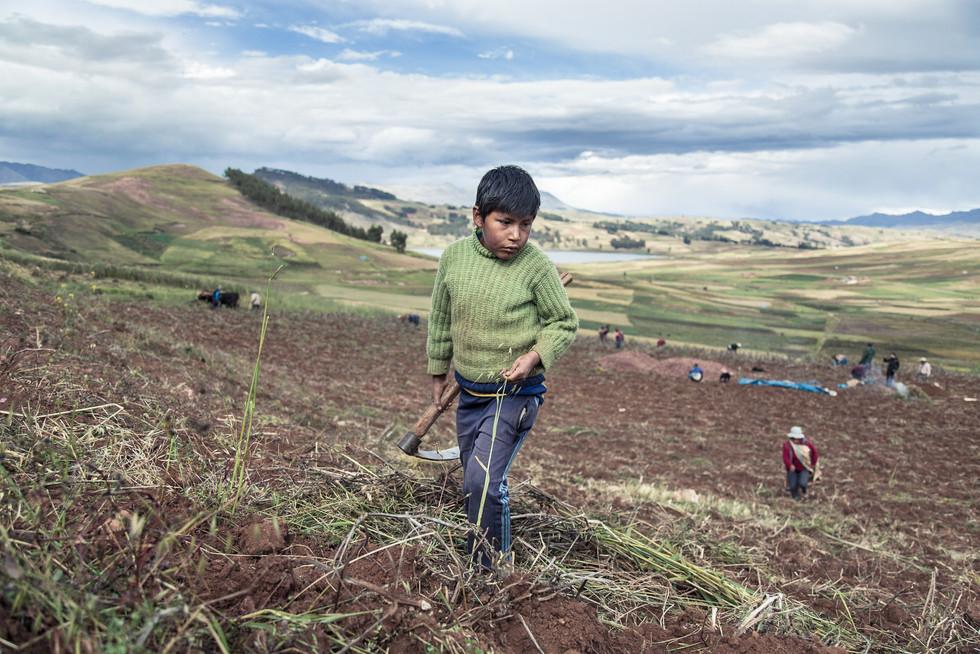 FabioErdos_Peru_Hijos del Sol-07.jpg