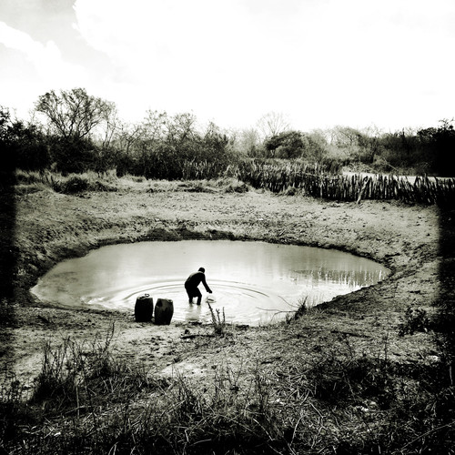 """Man collects water from an artificial pond to serve the animals. Many ponds are useless these days due to the low level of water. Has passed more than 5 years that the region hasn't received a significant rain. Some of the ponds are used only to feed the animals while others are only for daily life usage. Many of the ponds were build through a partnership of the government with locals NGOs, such as the SASOP, in the region where the photo was taken. The program """"1 Million Cisterns"""", from the Federal Government along with local organizations, brought a radical change of the reality of thousands of people in the Brazilian hinterland, making it possible an incredible social development and a transformation in the coexistence with the semi-arid reality and the drought. However, many of the cisterns are now empty due to one of the worst droughts that the region has suffered."""