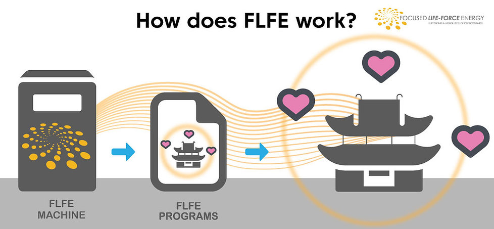How-does-FLFE-Work-5-2.jpg