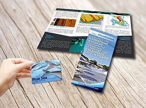 Επαγγελματικές κάρτες, Διαφημιστικά φυλλάδια,