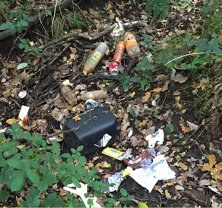 Litter Pick Rubbish.png