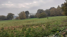 North Field, Egley Road, Mayford's Separation from Built up Woking.