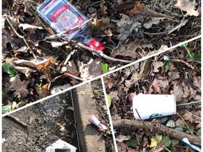 Mayford Village Society -  Spring Litter PickSaturday 27thApril 2019 – 10 a.m.