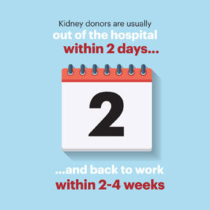 kidney_infographics_additions_03_sm.jpg