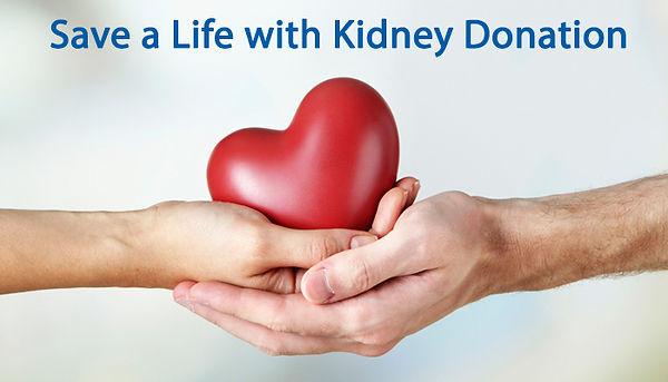 kidney-donation.jpg
