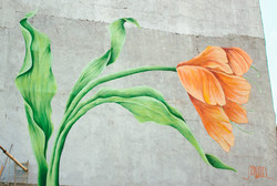 Flor sob concreto