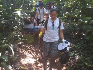 Limpeza em trilha de cachoeira- Ilha Bela