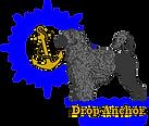 Fun Logo PWDCA 2021.png