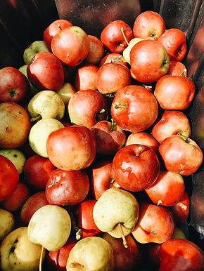 Spray-Free Apples