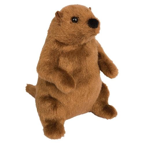 Groundhog stuffed animal (Shadoe)