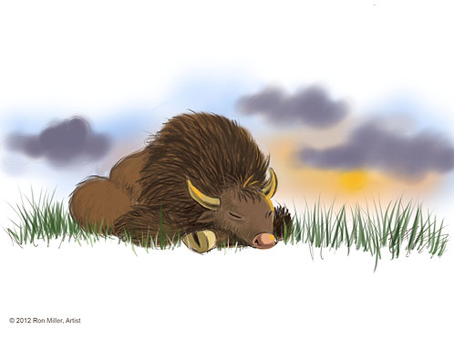 """""""Ray the Buffalo Resting in Park"""", Book Illustration Print #2, 7"""" x 5"""""""