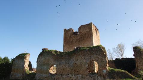 Castillo de Villapadierna, de la Casa de Alba a hogar para cigüeñas en la provincia leonesa