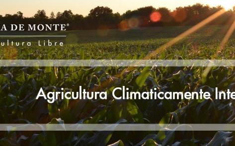 Agricultura Climáticamente Inteligente: El Agro como pilar de cambio.