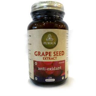 葡萄籽萃取 Grape Seed Extract
