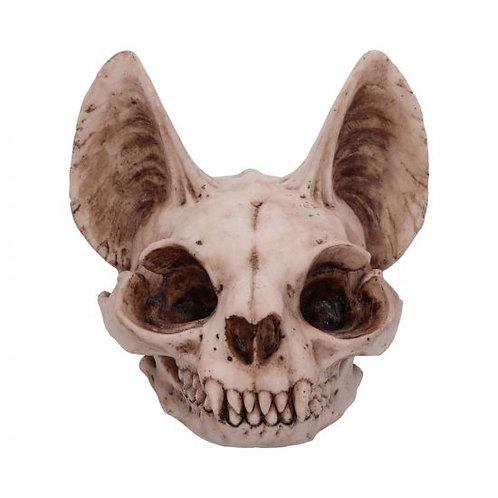 Bastet's Secret Cat Skull