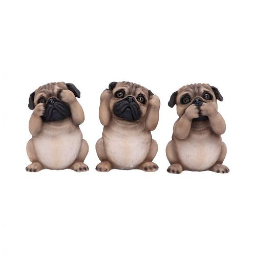 Three Wise Pugs