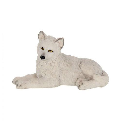 Winter Wolf Pup