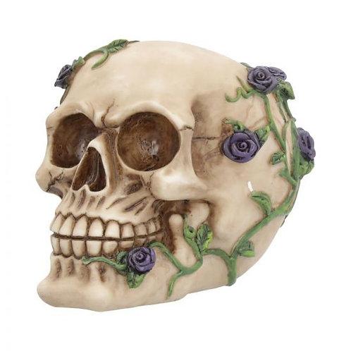 Purple Rose from Beyond Skull