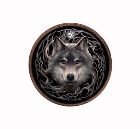 Night Forest Coin Purse by Anne Stokes