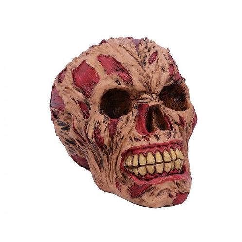 The Hoard Rotting Zombie Skull