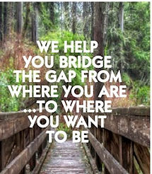 Bridge the gap.jpg