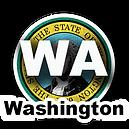 Washington Button.png