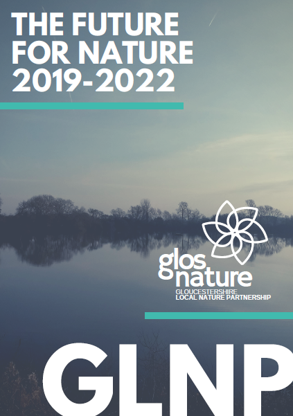 GLNP Strategy Cover 2019-22.PNG
