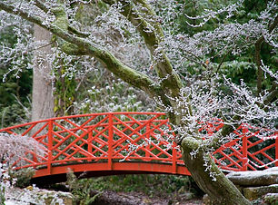 batsford arboretum bridge.jpg
