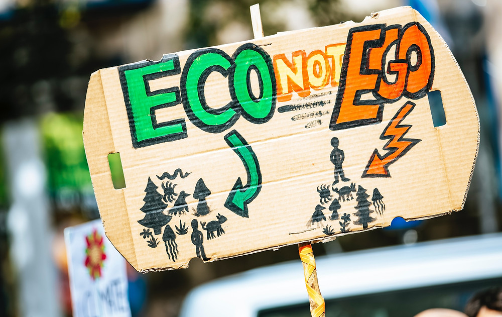 Environmental protests sign, young people, generation z