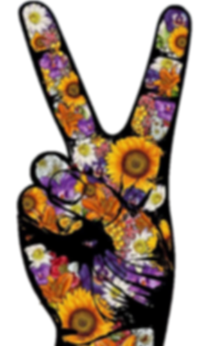 11yr sutraversary peace fingers.png