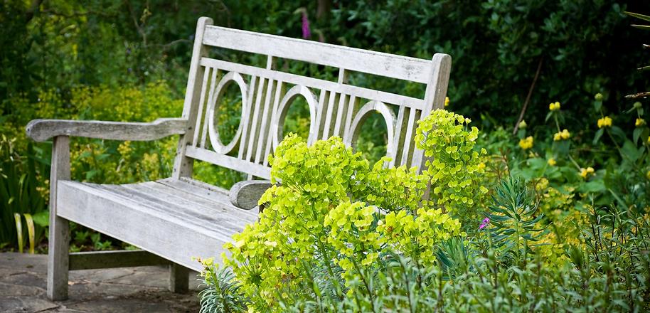 lempreinte vegetale bassin d'arcachon julien ducom