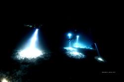 제로그래비티 스쿠버다이빙 아카데미 & 클럽 / 서울 스쿠버다이빙 / 서울 스킨스쿠버 / 야간 다이빙 / 나이트 다이빙
