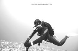 제로그래비티 스쿠버다이빙 아카데미 & 클럽 / 서울 스쿠버다이빙 / 서울 스킨스쿠버 / BTBF 프로그램