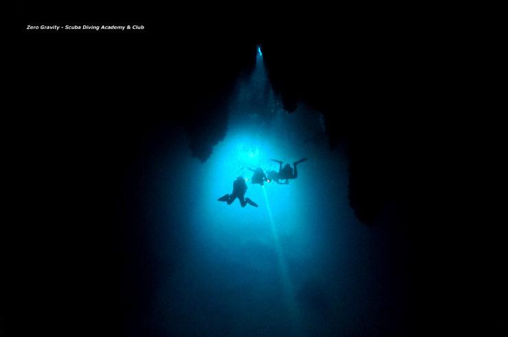 수중 자연주의자