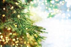 Closeup of Christmas-tree.jpg